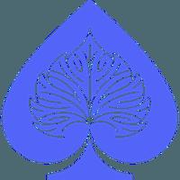 Bodhi (BOT) price, charts, market cap, and other metrics | CoinMarketCap