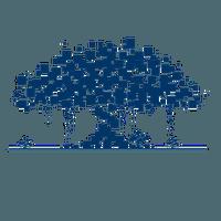 Banyan Network (BBN)