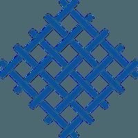 Fabric Token (FT)