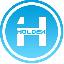 HOLDEX logo
