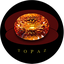 Topaz Coin
